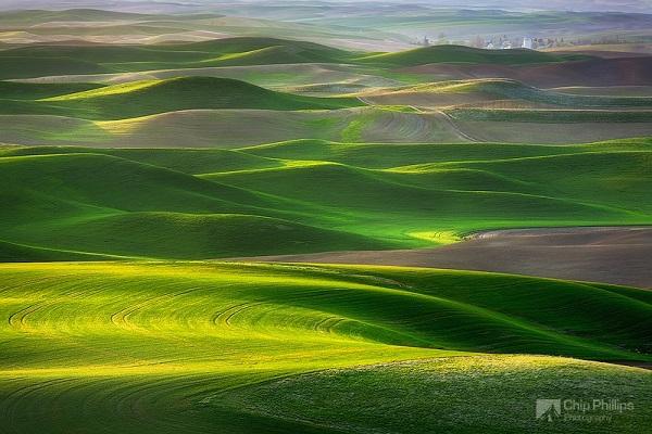 """Những thảo nguyên xanh trải dài """"bất tận"""" trên thế giới 11"""