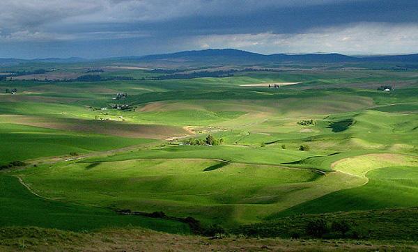 """Những thảo nguyên xanh trải dài """"bất tận"""" trên thế giới 12"""