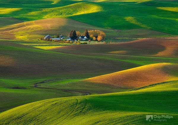 """Những thảo nguyên xanh trải dài """"bất tận"""" trên thế giới 14"""
