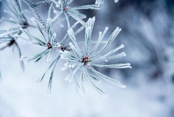 6 hiện tượng thiên nhiên tuyệt đẹp chỉ có vào mùa đông 2