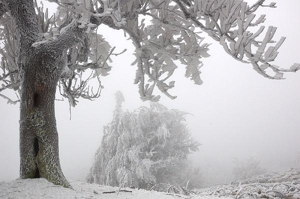 6 hiện tượng thiên nhiên tuyệt đẹp chỉ có vào mùa đông 9