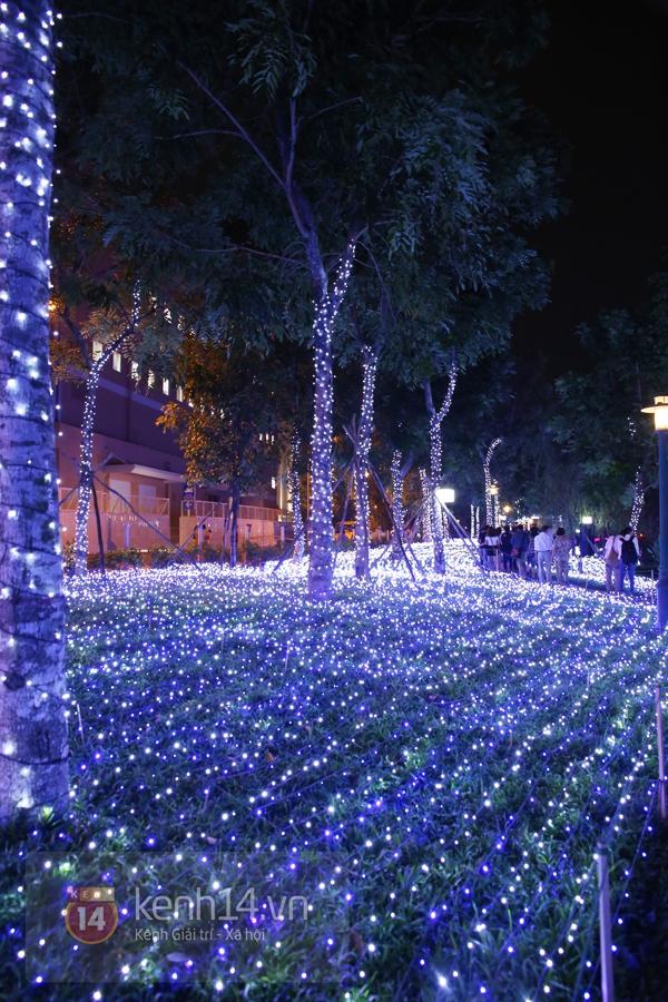 Sài Gòn: Ngỡ ngàng ngắm công viên sáng rực trong đêm với nửa triệu bóng đèn Led 30
