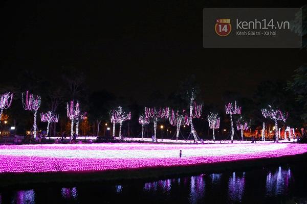 Sài Gòn: Ngỡ ngàng ngắm công viên sáng rực trong đêm với nửa triệu bóng đèn Led 3
