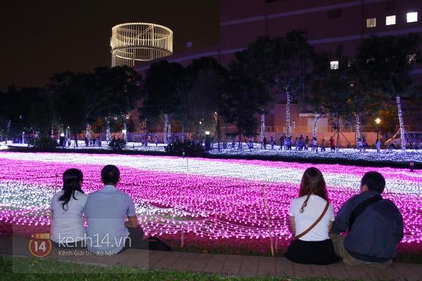 Sài Gòn: Ngỡ ngàng ngắm công viên sáng rực trong đêm với nửa triệu bóng đèn Led 10