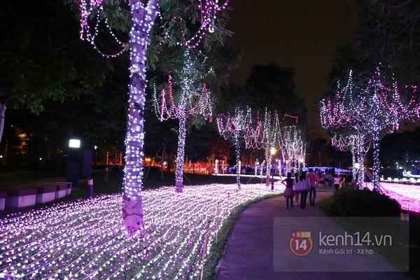 Sài Gòn: Ngỡ ngàng ngắm công viên sáng rực trong đêm với nửa triệu bóng đèn Led 13
