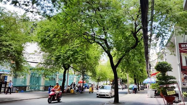 55 điều để bạn thấy Sài Gòn của mình tuyệt vời nhất! 48