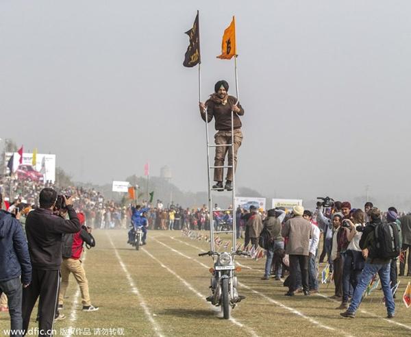 """Lái xe bằng thang, đua bò... và các môn thể thao cực """"dị"""" tại Ấn Độ 5"""