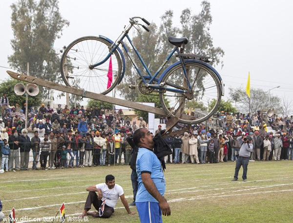"""Lái xe bằng thang, đua bò... và các môn thể thao cực """"dị"""" tại Ấn Độ 8"""