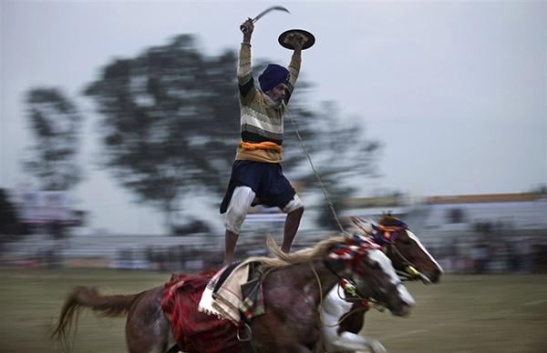 """Lái xe bằng thang, đua bò... và các môn thể thao cực """"dị"""" tại Ấn Độ 20"""