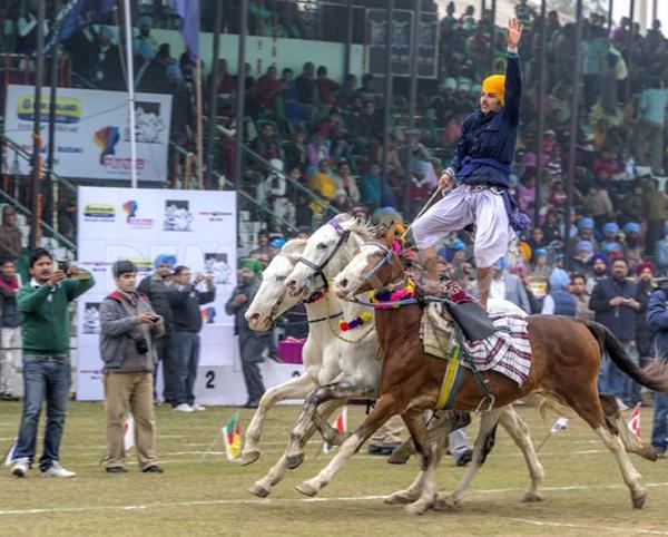 """Lái xe bằng thang, đua bò... và các môn thể thao cực """"dị"""" tại Ấn Độ 18"""