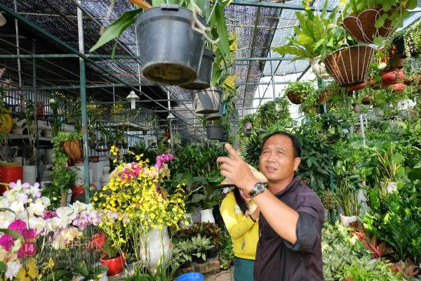 """Nhiều loại hoa có tên """"siêu lạ"""" xuống phố Sài Gòn vào dịp Tết Ất Mùi 4"""