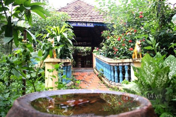 Độc đáo biệt thự Vườn Kiều độc nhất Việt Nam của cụ ông 81 tuổi 4