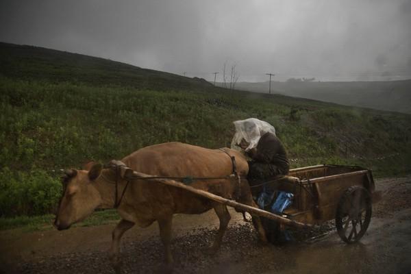 Những hình ảnh chưa từng chứng kiến về vùng nông thôn Triều Tiên 22