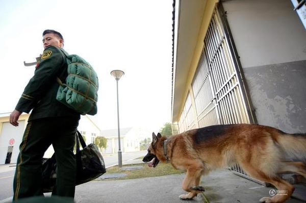 Chú chó trung thành bịn rịn níu kéo người huấn luyện lúc chia tay 3