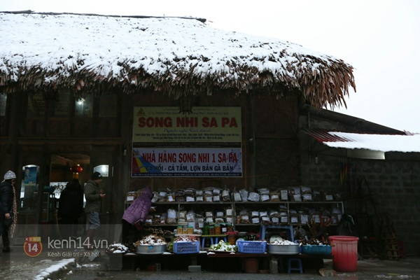 Chùm ảnh: Du khách thích thú chụp ảnh cùng tuyết trắng ở Sa Pa 9