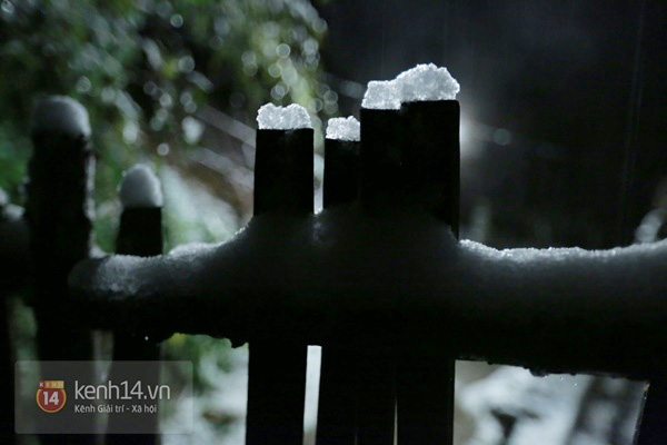 Chùm ảnh: Du khách thích thú chụp ảnh cùng tuyết trắng ở Sa Pa 2
