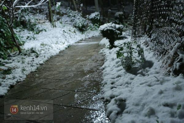 Chùm ảnh: Du khách thích thú chụp ảnh cùng tuyết trắng ở Sa Pa 4