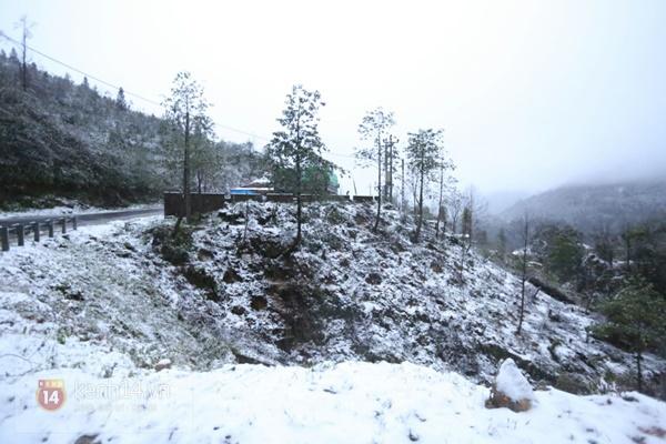 Chùm ảnh: Du khách thích thú chụp ảnh cùng tuyết trắng ở Sa Pa 8