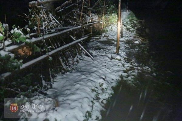 Chùm ảnh: Du khách thích thú chụp ảnh cùng tuyết trắng ở Sa Pa 5