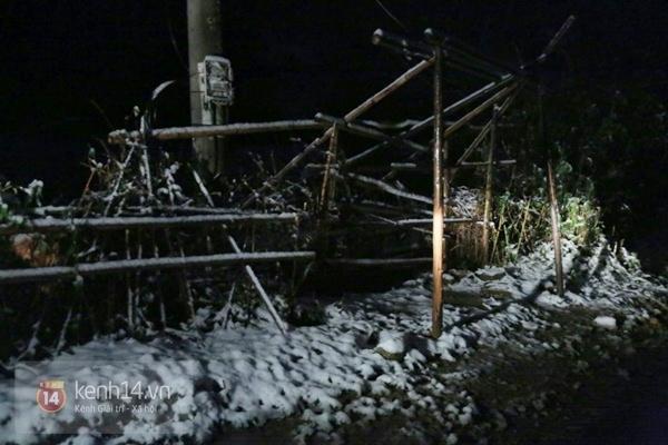 Chùm ảnh: Du khách thích thú chụp ảnh cùng tuyết trắng ở Sa Pa 6