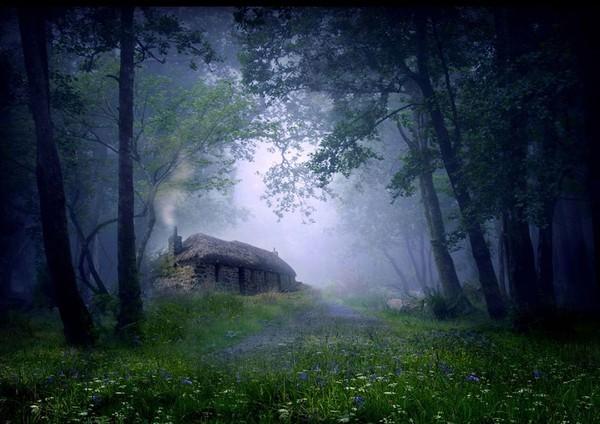 18 ngôi nhà tí hon nằm giữa những khung cảnh tuyệt đẹp 12