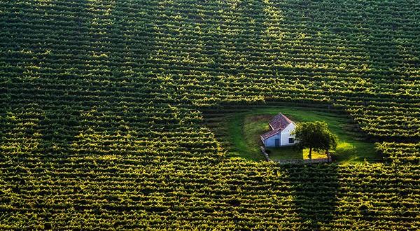 18 ngôi nhà tí hon nằm giữa những khung cảnh tuyệt đẹp 6