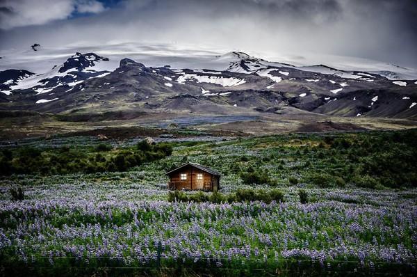 18 ngôi nhà tí hon nằm giữa những khung cảnh tuyệt đẹp 8