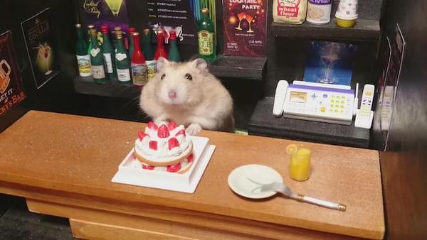 Tham quan quán bar siêu ngộ nghĩnh của những chú chuột Hamster đáng yêu 10