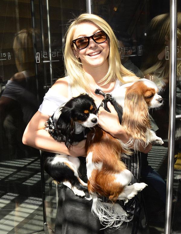 Những thú cưng dễ thương của sao Hollywood 12