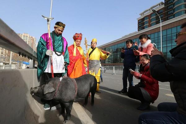 Cười té ghế với cảnh thầy trò Đường Tăng dắt lợn đi dạo phố 2