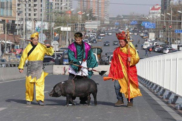 Cười té ghế với cảnh thầy trò Đường Tăng dắt lợn đi dạo phố 1