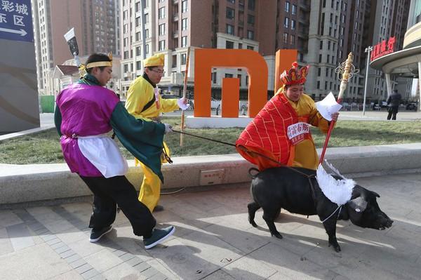 Cười té ghế với cảnh thầy trò Đường Tăng dắt lợn đi dạo phố 3