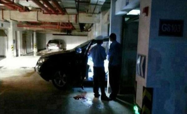 Thảm kịch: Đỗ xe trong garage, cả vợ lẫn chồng đều tử vong 2