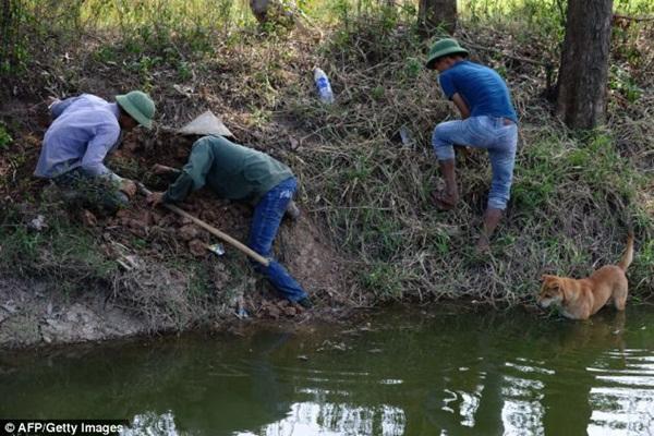Chùm ảnh: Cảnh chế biến thịt chuột tại Việt Nam lên báo nước ngoài 4