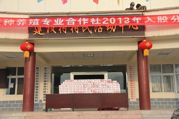 Bức tường tiền dài 2m, nặng 156kg gây xôn xao cộng đồng mạng Trung Quốc 2