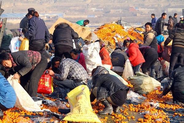 Trung Quốc: Cảnh sát dùng súng ngăn chặn người hôi của 8