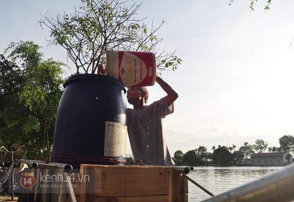 Hà Nội: Cả làng bơm nước ao tù để dùng làm nước sinh hoạt hàng ngày 11