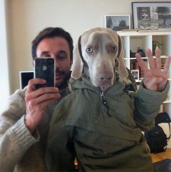 Chú chó tạo dáng chụp ảnh trên Instagram có 3,5 triệu fan 2