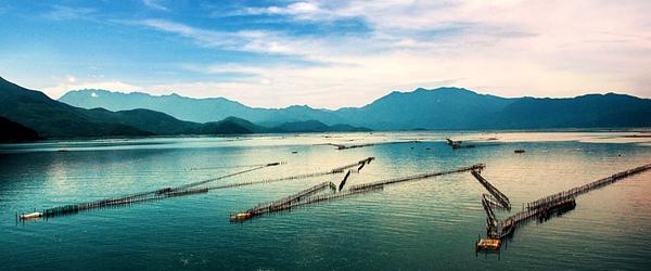 Những lý do khiến Đà Nẵng trở thành điểm đến hấp dẫn nhất hành tinh 1