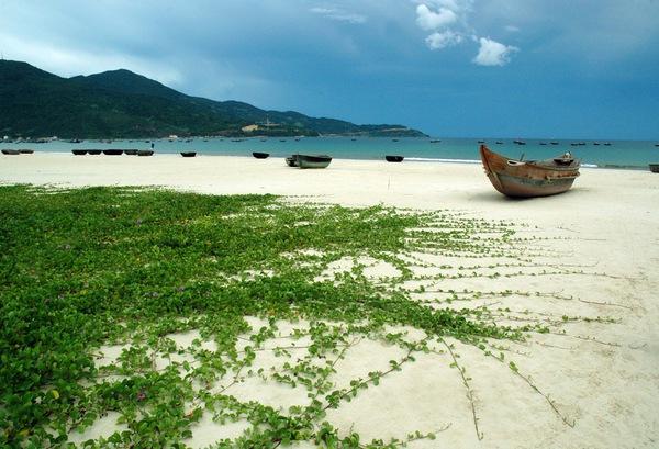 Những lý do khiến Đà Nẵng trở thành điểm đến hấp dẫn nhất hành tinh 5