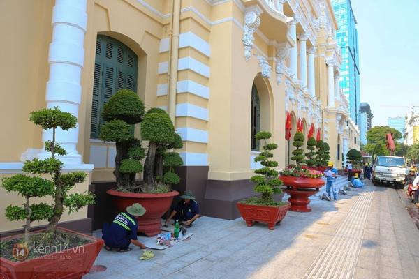 Chùm ảnh: Không khí Tết đã rộn ràng trên từng góc phố Sài Gòn 9