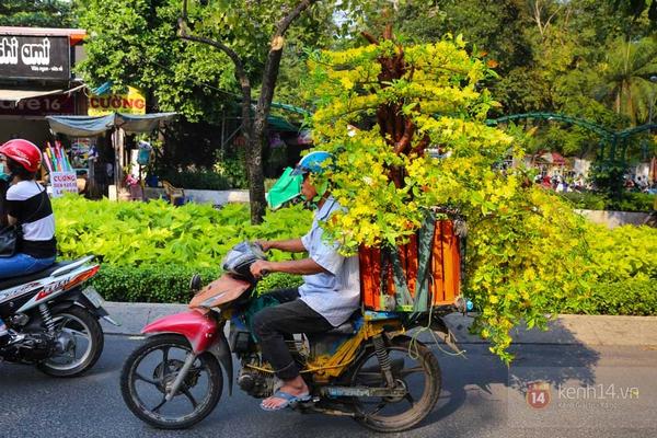 Chùm ảnh: Không khí Tết đã rộn ràng trên từng góc phố Sài Gòn 7