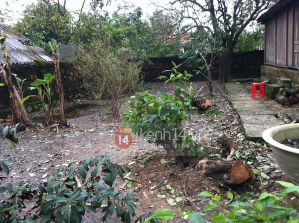 Không khí tiếc thương tại nhà Đại tướng Võ Nguyên Giáp ở Quảng Bình 6