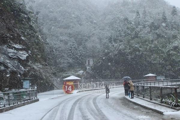 Chùm ảnh hot: Tuyết rơi dày, phủ trắng Sa Pa 9