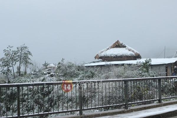 Chùm ảnh hot: Tuyết rơi dày, phủ trắng Sa Pa 11