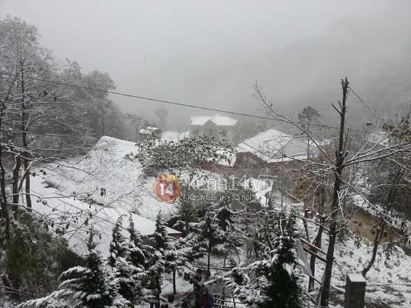 Chùm ảnh hot: Tuyết rơi dày, phủ trắng Sa Pa 3