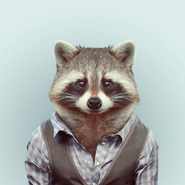 Sáng tạo hài hước biến động vật thành... trò cười 13