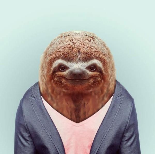 Sáng tạo hài hước biến động vật thành... trò cười 18
