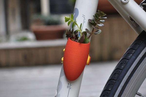 """Ý tưởng trồng cây """"biết đi"""" ở những nơi không ngờ 2"""