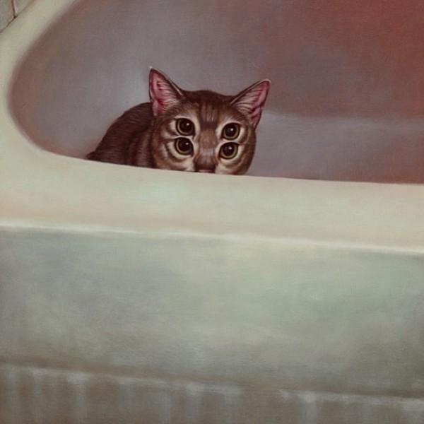 """Loài mèo biến hình qua những sáng tạo """"buồn cười"""" 10"""